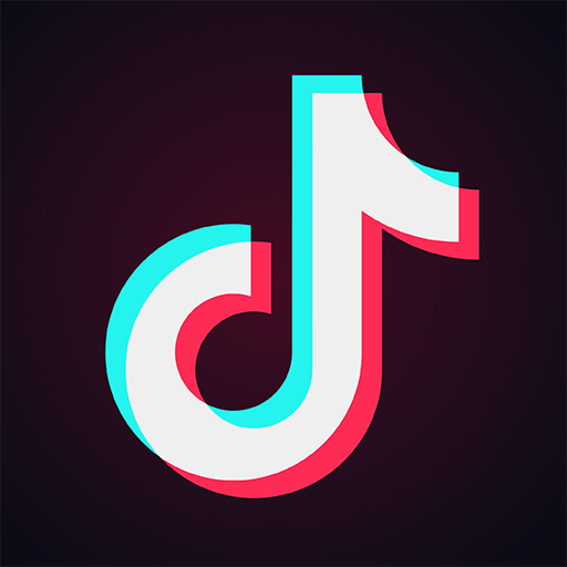 Reviewing the TikTok Ban and its Implications