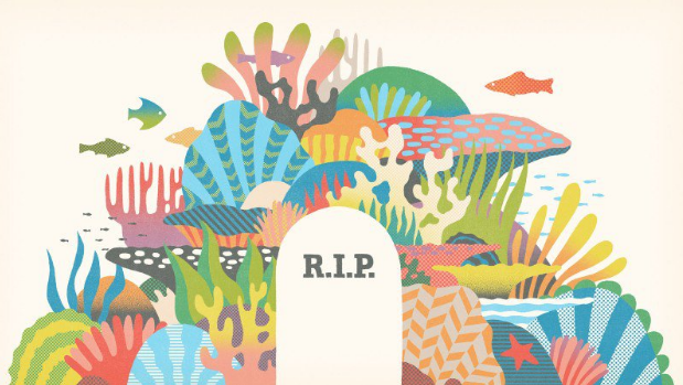 The Decline of the Great Barrier Reef