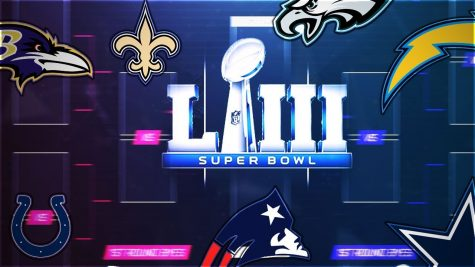 NFL Playoffs Preview