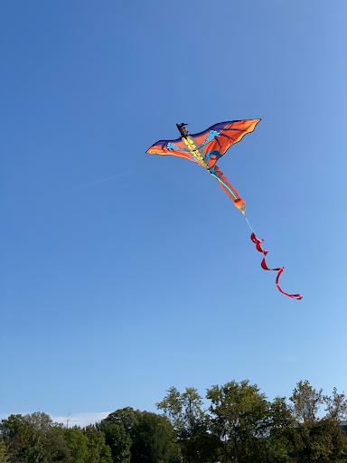kite+1