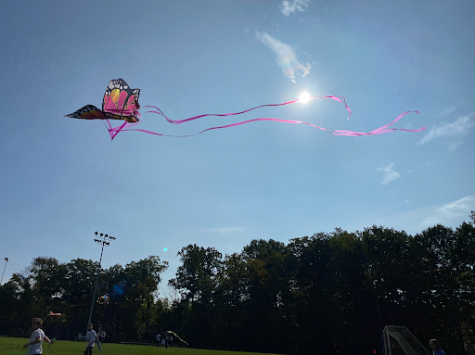 Let's Go Fly a Kite: In Pictures